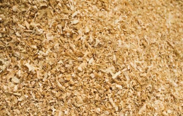 Biomass Fuel | GWG Wood Group